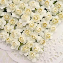 Klasyczne róże kremowe