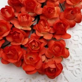 Klasyczne róże pomarańczowe