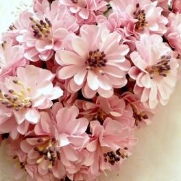 Cynie 40 mm różowe