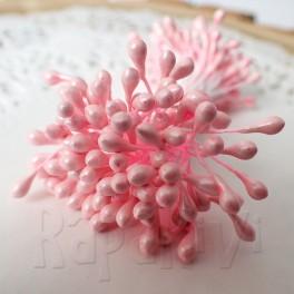 Pręciki drobne różowe