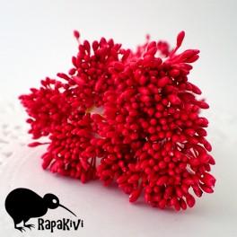Pałeczki drobniutkie czerwone