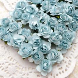 Drobne różyczki niebieskie