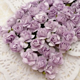 Drobne różyczki fioletowe