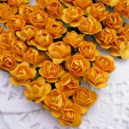 Drobne różyczki ciemnożółte