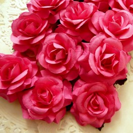 Eleganckie róże 40 mm fuksja