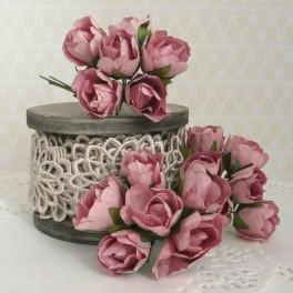 Pąki róż pudrowy róż