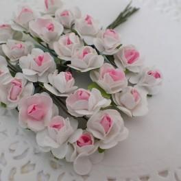 Drobne różyczki biało-różowe