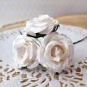 Róże marszczone białe 3 szt.
