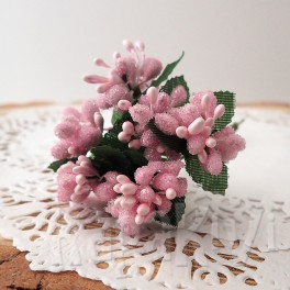 Pręciki oszronione w kiściach 5 szt. różowe