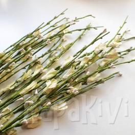 Gałązka kwiatowa żółta