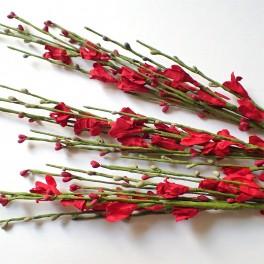 Gałązka kwiatowa czerwona