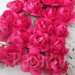 Klasyczne róże fuksja