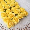 Klasyczne róże żółte
